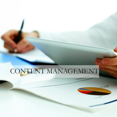Content Management for fresh, interesting content on your site on a regular basis - from hiring writers to managing content creation.